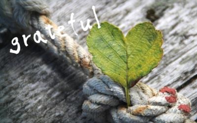 Hoe dankbaarheid je in balans houdt